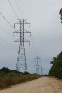 High Tension Wires from the Nuclear Power Plant
